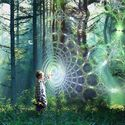 the psychedelic web of life connects us all.