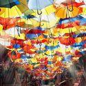 Umbrella Street , Portugal