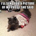 nice pussy