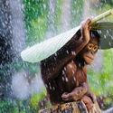 Deszczyk pada