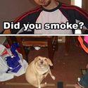 Paliłeś?!