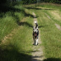 Z cyklu : My best friend!!!