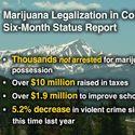 Pół roku po legalizacji
