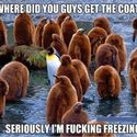 Skąd macie te płaszcze chłopaki? :D