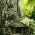 Chatka w drzewie