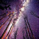Gwiazdy nocą, nocą gwiazdy. *2