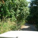 Niebezpieczny problem na drodze