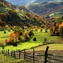Górsko