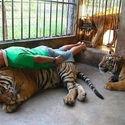 planking ekstremalny (: