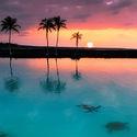 Kiholo Bay, Hawaje