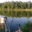 Spontan trip na fishing and grzybing  :D