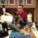 Doc Sheldon Cooper