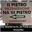 Polacy :D