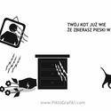 twój kot już wie...
