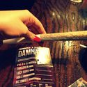 Holenderski papieros
