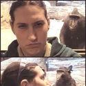 Małpa