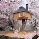 Japonia - domek na drzewie
