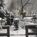 Piękną zimę mamy tej wiosny.