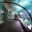 Podwodny korytarz.
