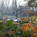 Orłowo jesienią