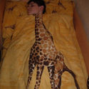 pan żyraf